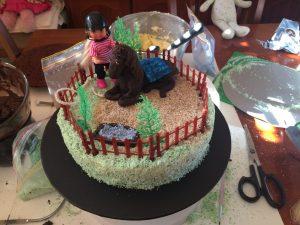 Women's Weekly horse park cake