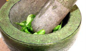 Pesto - ready for mushing